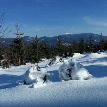 Rysianka po Krawców Wierch zimowo